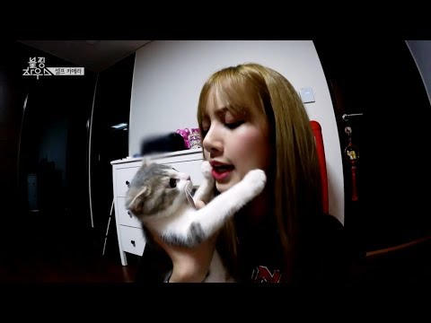 BLACKPINK HOUSE EP. 12 - 2 | LISA PLAYING WITH LEO