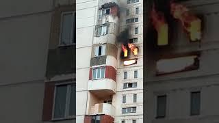 Кизилюрт 1.10.2018 горит под собака , спасают детей