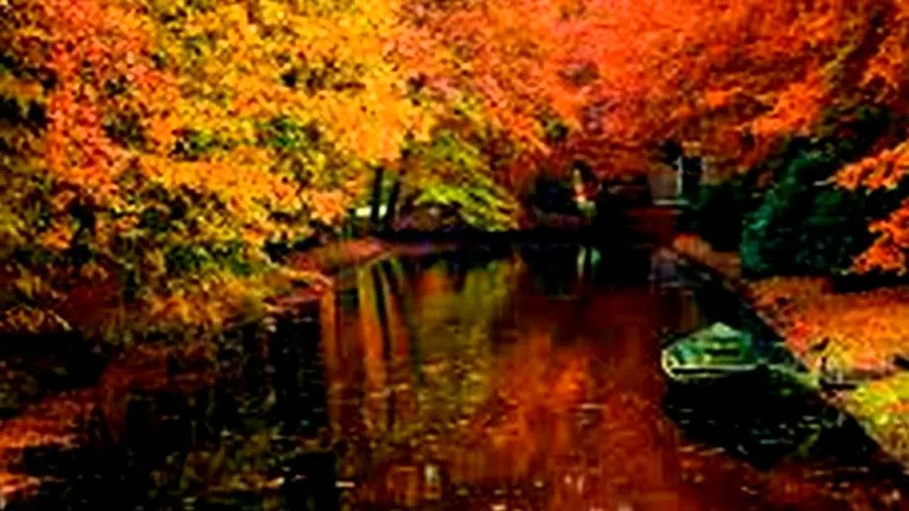 Fall Wallpaper Screensavers Autumn Landscapes Youtube