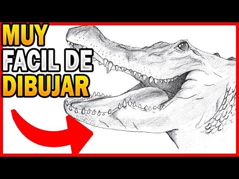 🥇 como 🅳🅸🅱🆄🅹🅰🆁 un COCODRILO realista paso a paso ✅ cómo dibujar un cocodrilo fácil y rápido