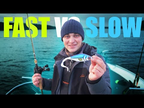 PIKE FISHING: Slow Vs Fast Retrieve CHALLENGE (What Will Catch More/bigger Fish?!)