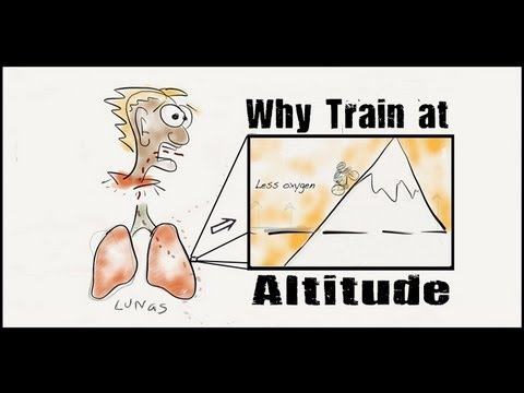 Why Do Athletes Train at Altitude?