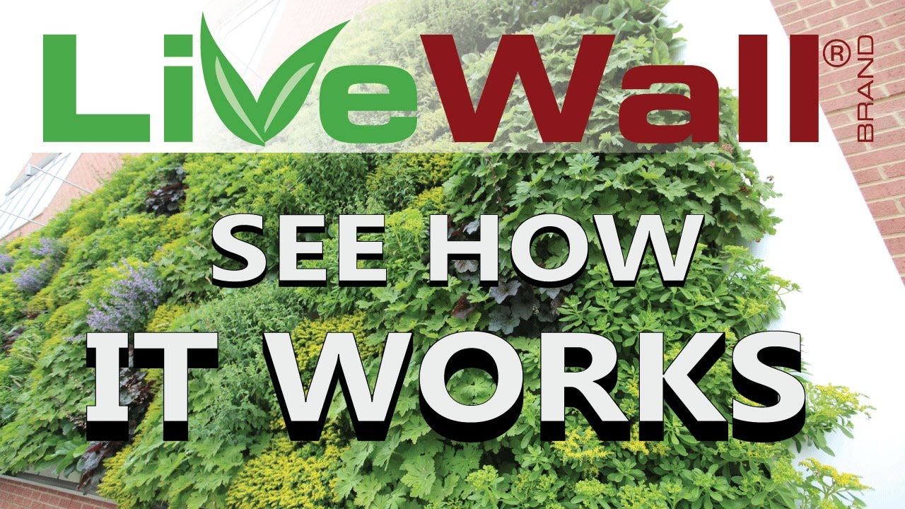 how the livewall living wall system works youtube. Black Bedroom Furniture Sets. Home Design Ideas