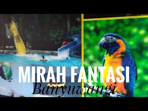 mirah-fantasia-banyuwangi