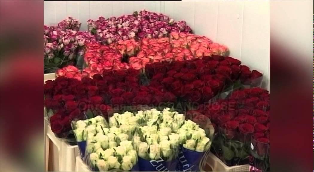 Сравниваем цены: где купить самые дешевые цветы к первому сентября .