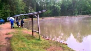 NC Carp fishing @ Eds. Josh + Danny 30.7 hog