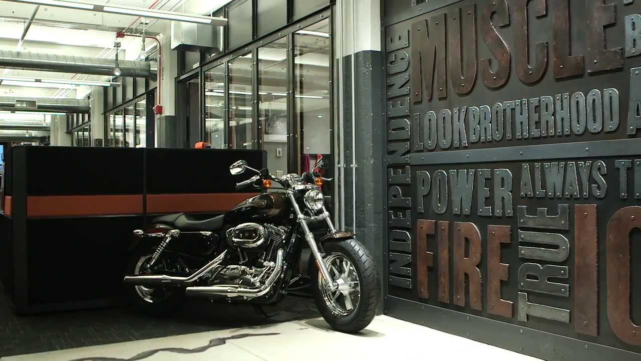case study on harley diversification The author has selected harley davidson as the brand to be examined for the  scope of this analysis with a view to identify the sources of brand equity, assess   while simultaneously diversifying their image and increasing brand equity due  to  harley-davidson will be a case history in social branding.