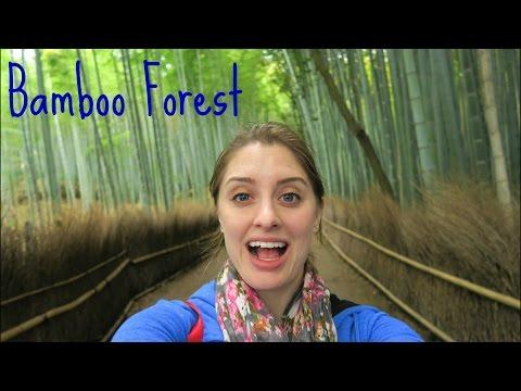 ARASHIYAMA BAMBOO FOREST | Kyoto, Japan
