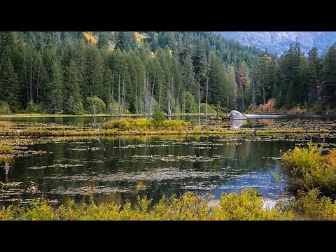 """National Park Service Refusing To Rename """"Coon Lake"""""""