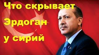 Вот что скрывает Эрдоган прямо у сирийской границы