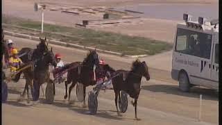 Vidéo de la course PMU PREMI UNITA STAR'S