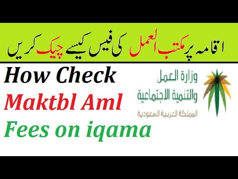 How To Check Ministry of Labor Maktab Amal Fees In Saudi Arabia