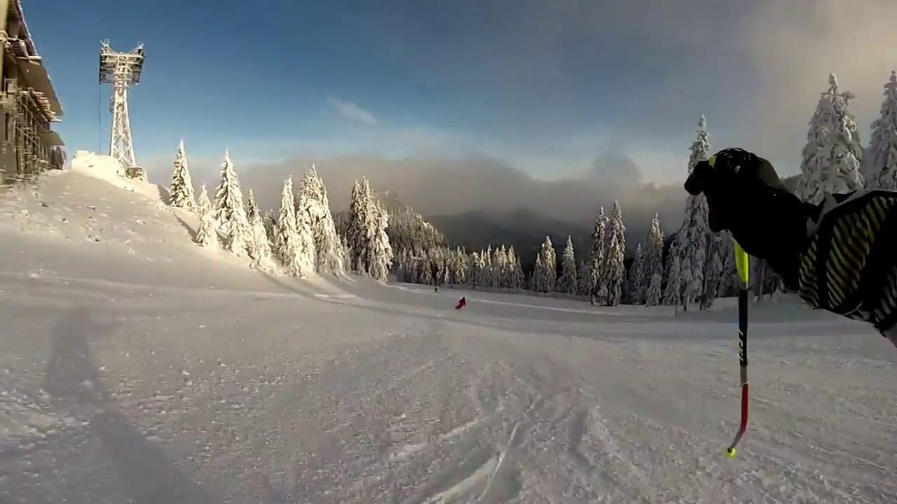 formarea de schi în varicoză)