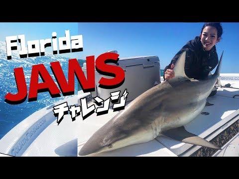 激闘・・フロリダで発狂!人喰いサメと闘う!! 女の1人旅/ Big shark in Florida.
