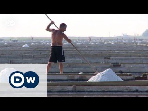 Slovenia: The last salt farmers | Focus on Europe