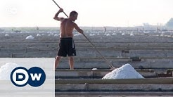Slovenia: The last salt farmers | Focus on Europe
