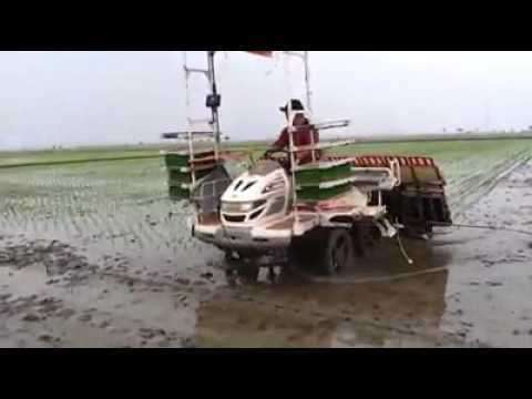 Rice transplanter of mahindra swaraj company making new modal