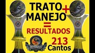 TRATO E MANEJO = RESULTADOS!   213 CANTOS   Mago dos Coleiros
