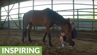 Therapy horse helps police officer in a way he never expected