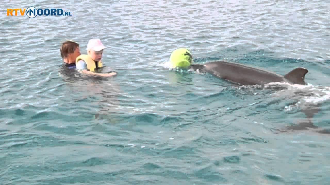 Dolfijnen Helpen 11 Jarige Emma Uit Winsum Rtv Noord