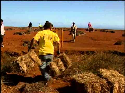 Kahoolawe Reborn Years After Bombing
