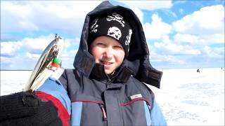 Ловля судака зимой, часть 2.