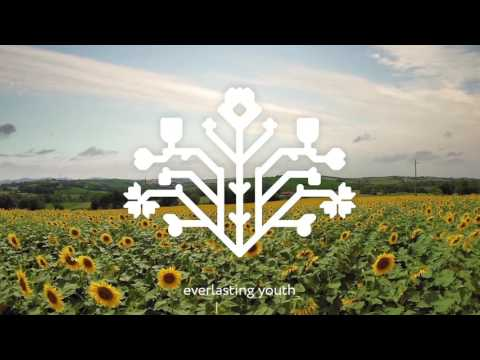 🎬 Moldova: Discover the routes of life