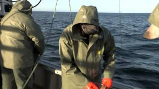 Cold Water Cowboys - Episode 1 Bonus Scene