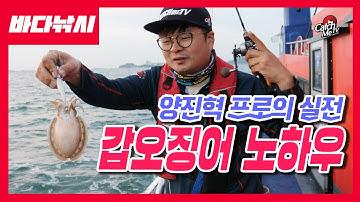 [4K] 양진혁의 갑오징어 낚시 노하우 - 채비운영, 끝보기, 가지채비 등