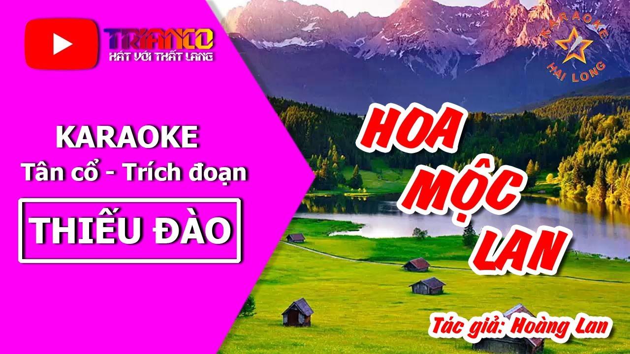 Karaoke Trích đoạn HQ Hoa Mộc Lan - Thiếu Đào - Hong Michael