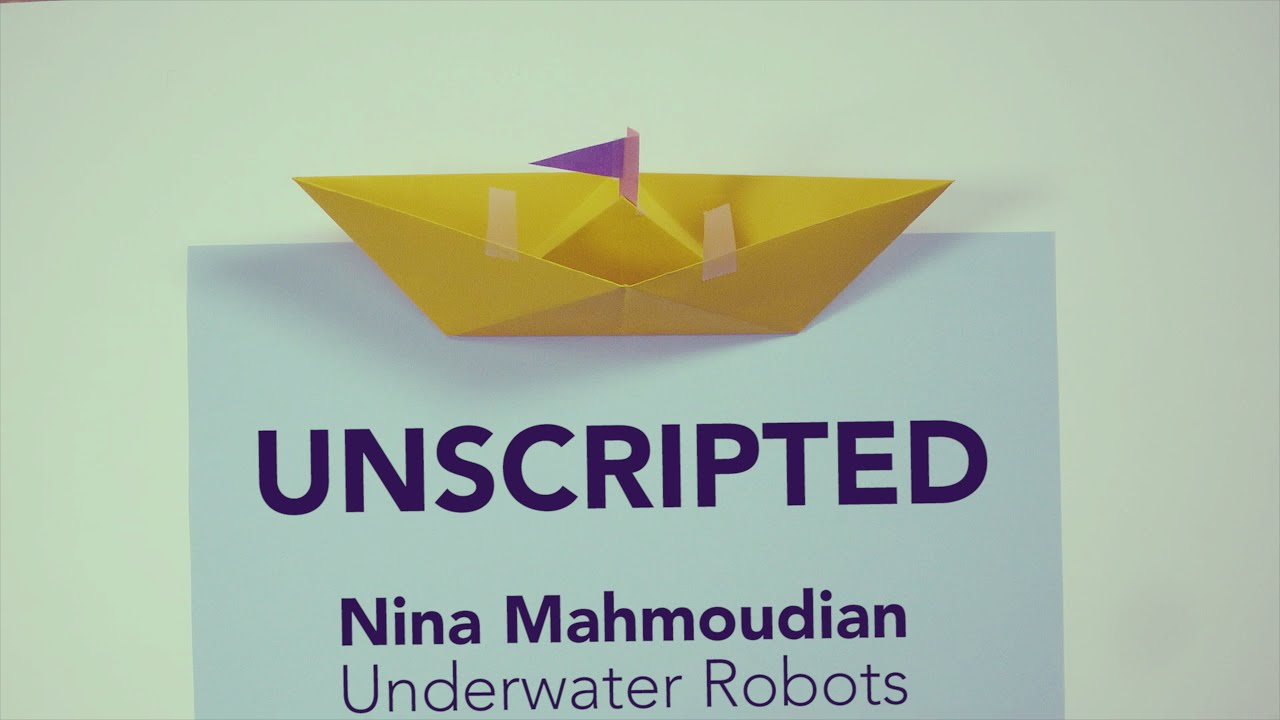 Preview image for Underwater Robots video