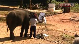 Haathi mere saathi (The Mahouts) Eng Subs