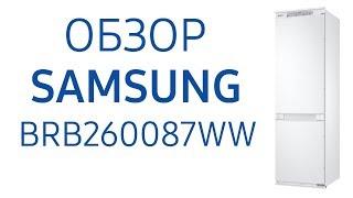 Холодильник Samsung BRB260087WW встраиваемый