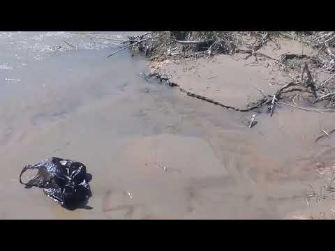 Рыбалка на подкумке поймано за 2часа 4 усача