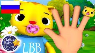 детские песенки | Семья пальчиков | мультфильмы для детей | Литл Бэйби Бам