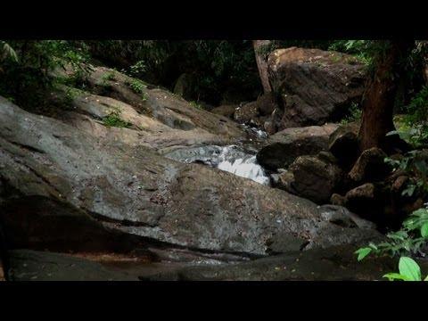 Kallar River in Thiruvananthapuram