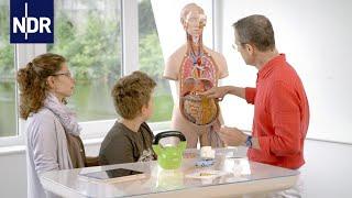 Kindgerecht abnehmen und Diabetes verhindern | Die Ernährungs-Docs | NDR