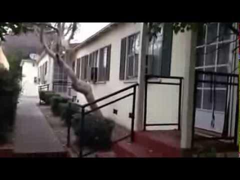 BURBANK 3 Units For Sale TRIPLEX Multi-Family San Fernando Valley