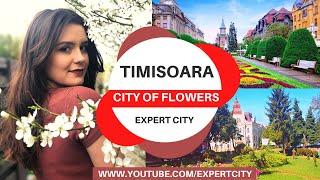 barbati din Timișoara cauta femei din ClujNapoca