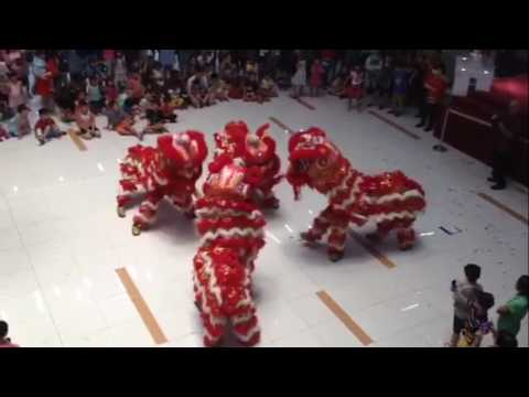 CNY 2017 - Lion and Dragon Dance performance - Bukit Timah Shopping Mall