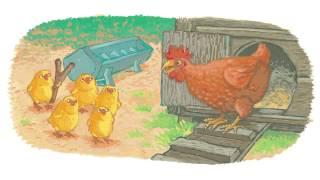 Jez Alborough reads Six Little Chicks