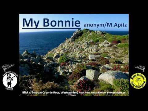 my-bonnie…-instrumental-schlossconsortium-köthener-schlossconsortium-orchester-schloss-köthen-anhalt