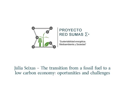 Júlia Seixas - The transition from a fussil fuel to a low carbon economy