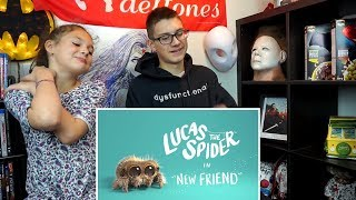 Lucas The Spider - New Friend REACTION