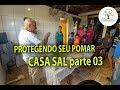 PROTEGENDO SEU POMAR CASA SAL, 03, Plantar em Casa