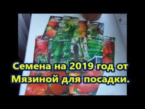 Семена на 2019 год от Мязиной для посадки.