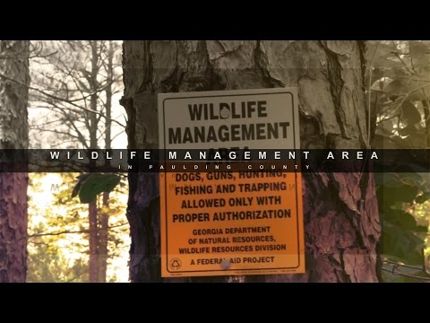 Learn About Paulding County's Wildlife Management Area
