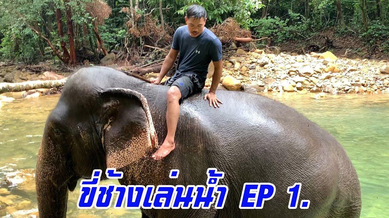 EP 1. ดำน้ำกับช้าง