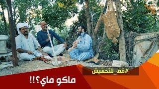 محمد وحبنتي يدورون ماي .. شوفوا بازة شنطاهم ؟!!