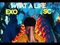 EXO-SC 세훈&찬열 'What a life' MVREACTION